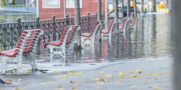 benches in flood